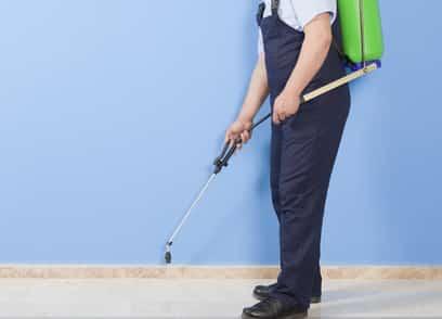 شركة مكافحة حشرات بالدمام و رش مبيدات بالدمام 0591402014