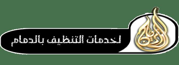 wifi-logo3